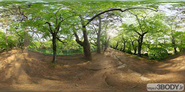 فایل HDRI درختان پارک عکس 1