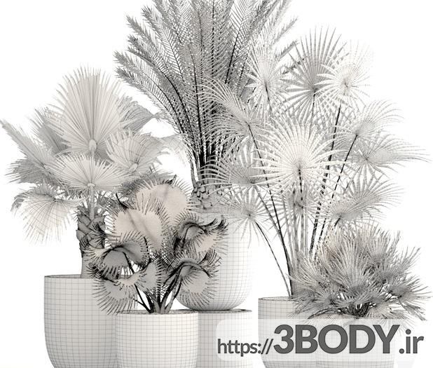 ابجکت سه بعدی مجموعه گل های اپارتمانی عکس 4