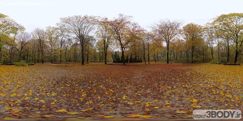 فایل HDRI طبیعت جنگل عکس 1