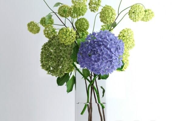 آبجکت سه بعدی  گل ادریسی آبی عکس اصلی