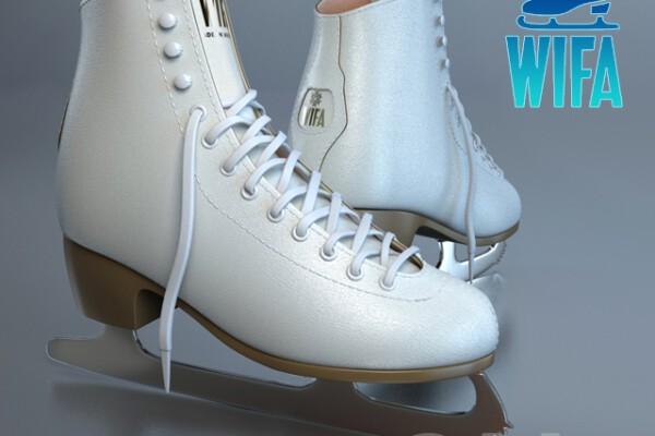 مدل سه بعدی کفش اسکی روی یخ عکس اصلی