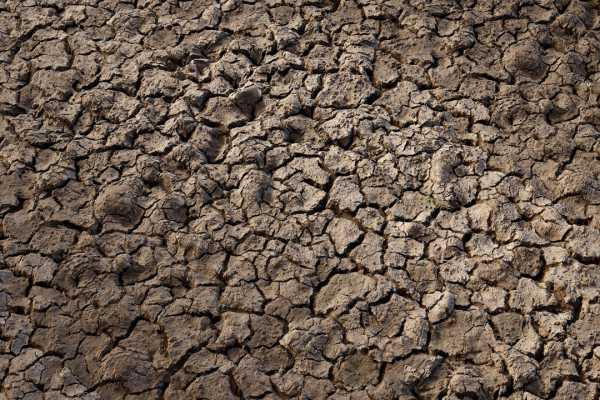 متریال گل cracked soil عکس اصلی
