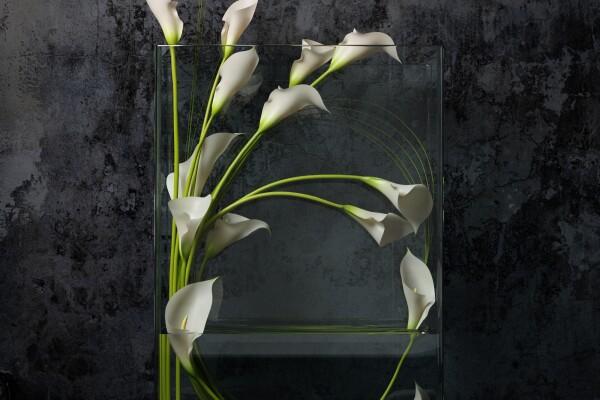 آبجکت سه بعدی  دسته گل شیپوری سفید عکس اصلی