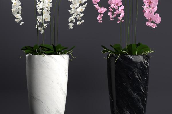 آبجکت سه بعدی دسته گل  و گلدان ارکیده عکس اصلی