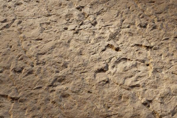 متریال صخره   قهوه ای عکس اصلی