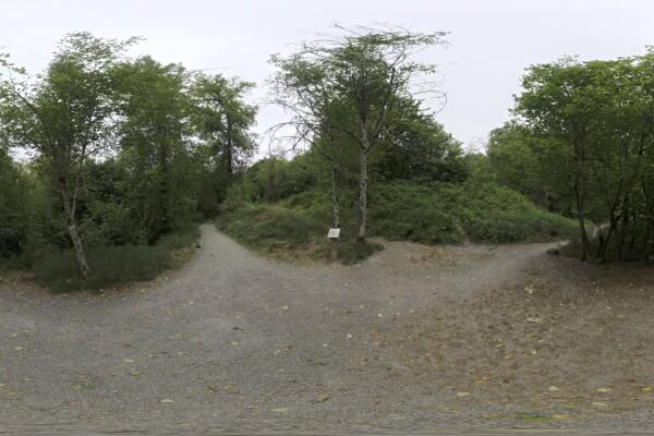 فایل HDRI خارجی پارک منطقه ای Whipple Creek 01 عکس اصلی