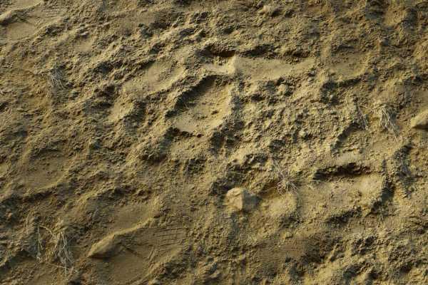 متریال گِل rough soil عکس اصلی