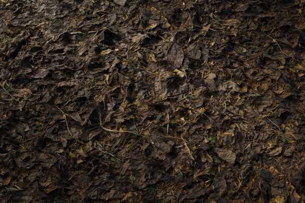 متریال آوار surface debris عکس اصلی
