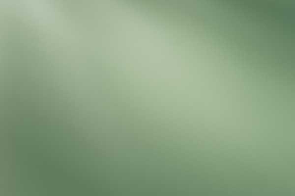 متریال دیوار گچی interior paint   سبز عکس اصلی