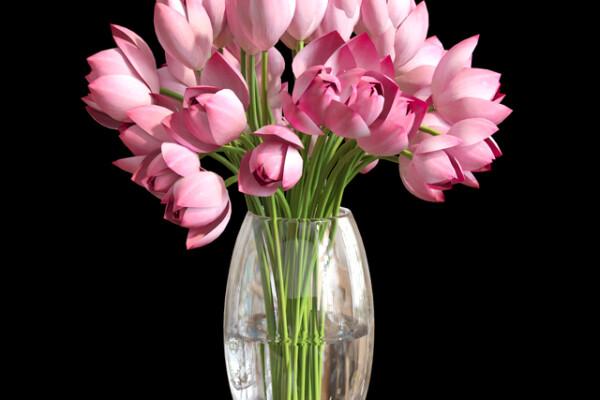 آبجکت سه بعدی دسته گل لوتوس عکس اصلی