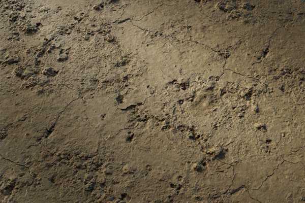 متریال گِل surface soil    قهوه ای عکس اصلی