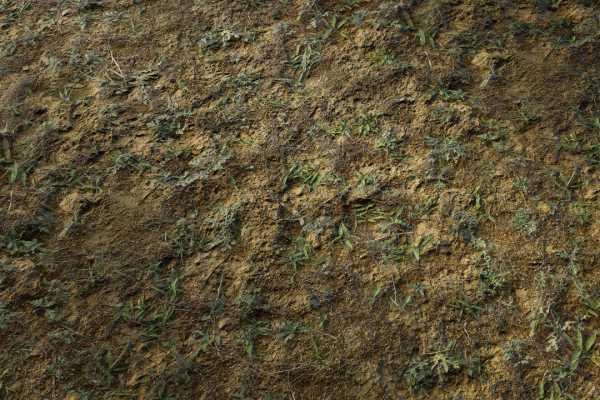 متریال خاک surface soil عکس اصلی
