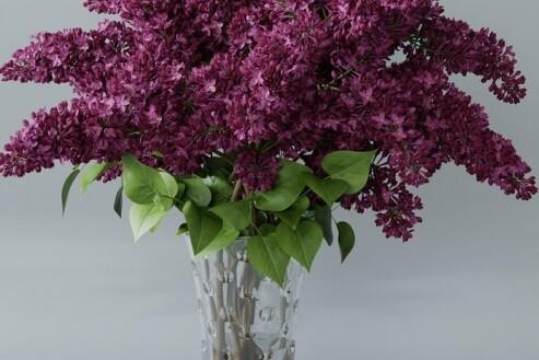 آبجکت سه بعدی گل بنفشه عکس اصلی