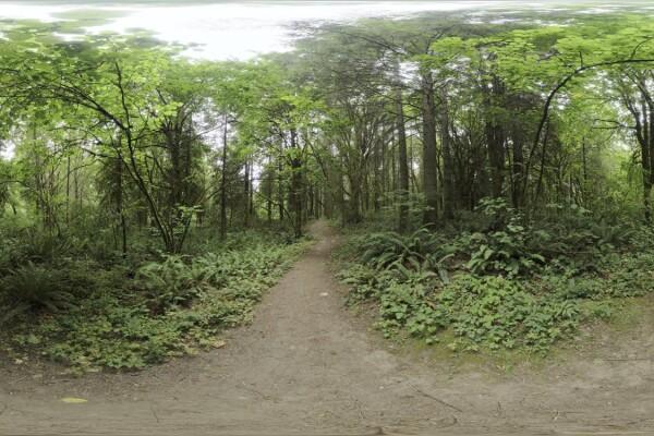 فایل HDRI خارجی پارک منطقه ای Whipple Creek 04 عکس اصلی
