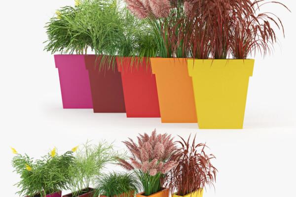 آبجکت سه بعدی ست گلهای رنگی زینتی عکس اصلی
