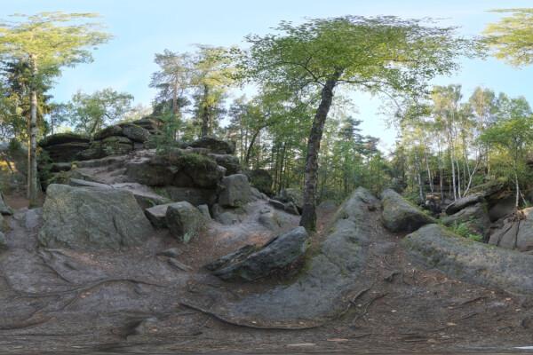 تصویر اچ دی ار ای خارجی جنگل عکس اصلی