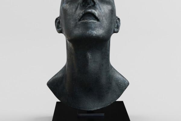 آبجکت سه بعدی مجسمه سر عکس اصلی