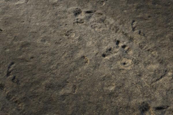 متریال سنگ صاف   خاکستری عکس اصلی