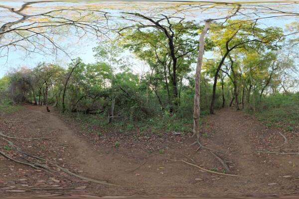 فایل HDRI خارجی پیاده روی رودخانه 2 عکس اصلی