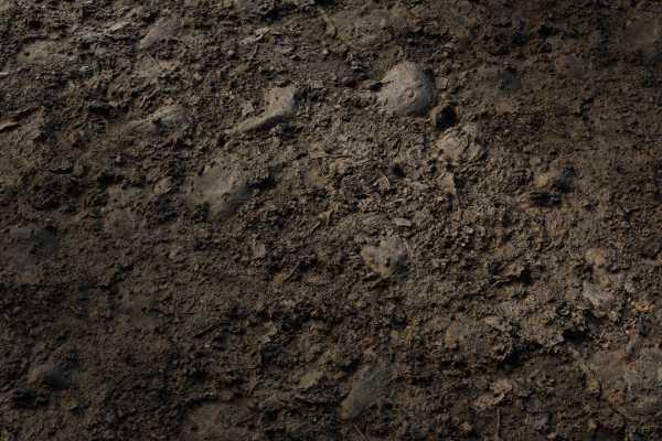 متریال خاک dried soil عکس اصلی