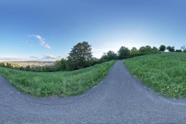 فایل HDRI طبیعت سرسبز و درختان عکس اصلی