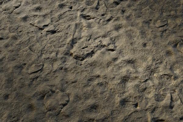 متریال سنگ زبر   خاکستری عکس اصلی