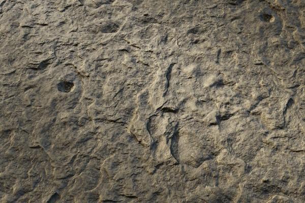 متریال صخره صاف   خاکستری عکس اصلی