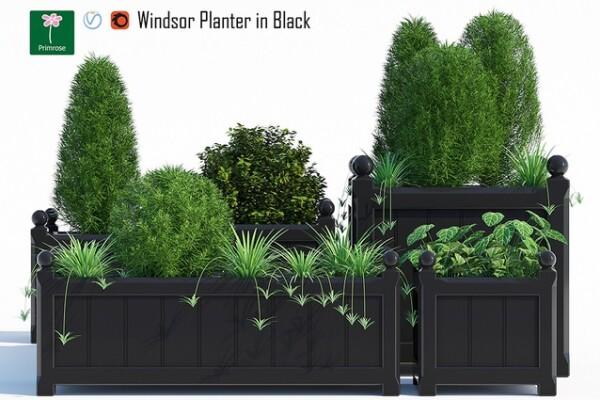 آبجکت سه بعدی مجموعه گیاهان زینتی عکس اصلی