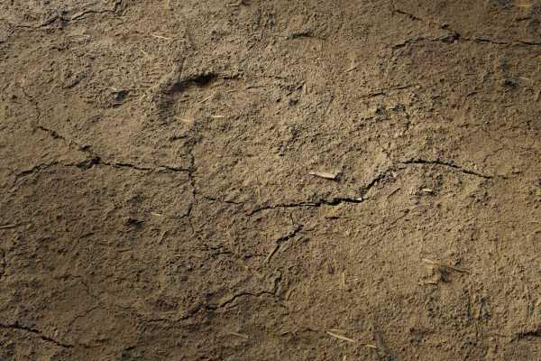 متریال خاک cracked soil    قهوه ای عکس اصلی