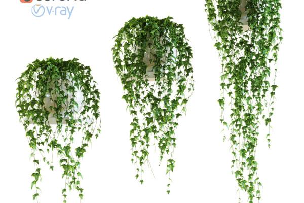آبجکت سه بعدی گل پیچک در گلدان عکس اصلی