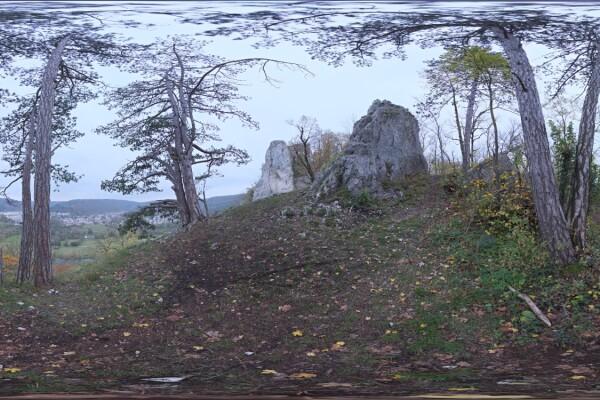 تصویر HDRI طبیعت جنگل عکس اصلی