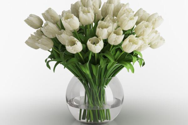 آبجکت سه بعدی  گلدان لاله های سفید عکس اصلی